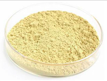 SJS Neem Technical Powder