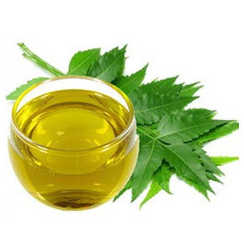 Neem Plant, Neem Oil